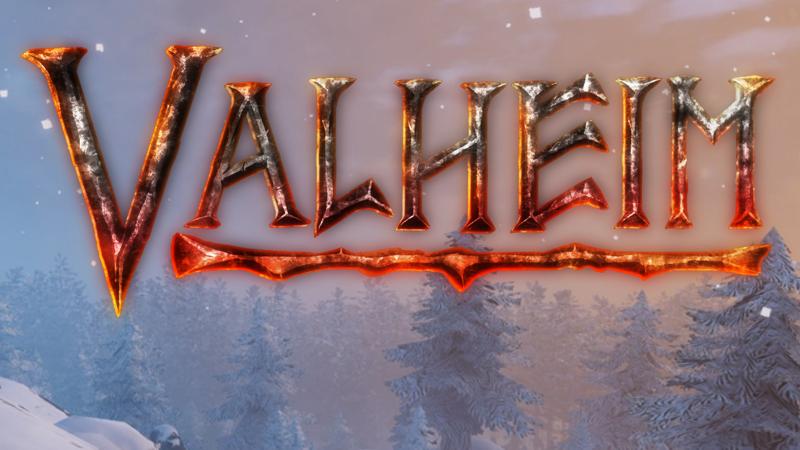 valheim server hosting